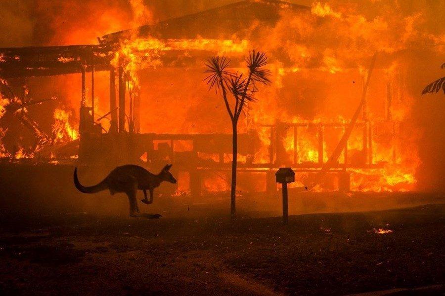 """Experta en desastres sobre incendios forestales: """"La sequía aumenta su magnitud»"""